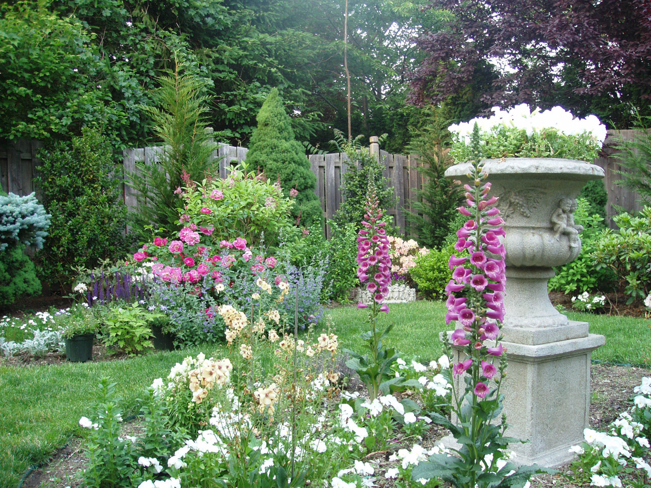 Types of garden plants: a selection of sites
