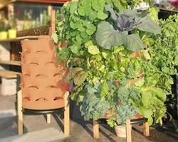 garden tower project llc released the latest version of the innovative composting garden tower a space saving patio farm that allows gardeners to grow up - Garden Tower Project